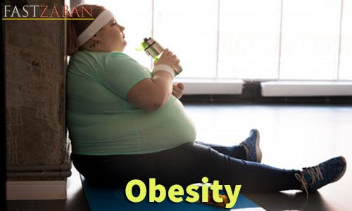 آموزش تصویری ۵۰۴ - کلمه Obesity